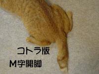 大阪の行政書士事務所2007年9月画像