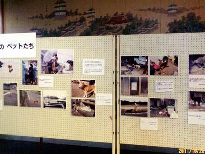 大阪の行政書士事務所「2011年10月」画像